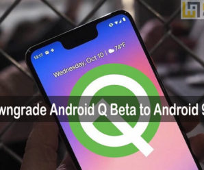 Android Q downgrade